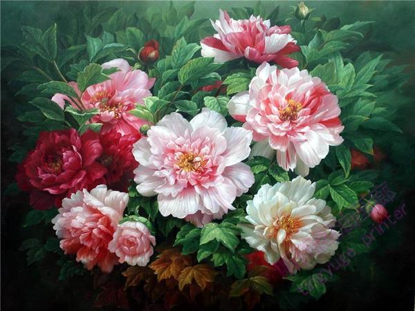 听雨阁油画包邮纯手绘客厅玄关卧室装饰画花卉牡丹花写实风水画01